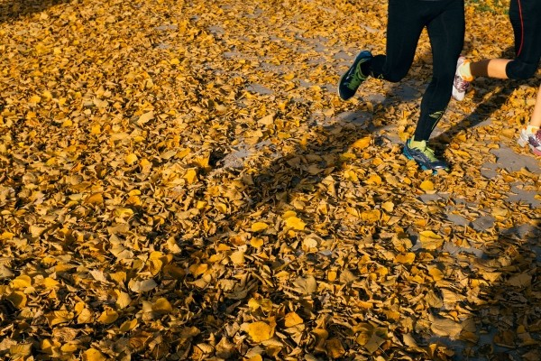 joggers-running-in-autumn-park