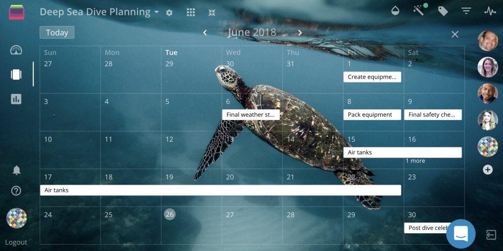 rindle-calendar-view